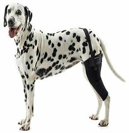 Dog Knee Brace Therapeutic Rear ACL Hock Support Compression